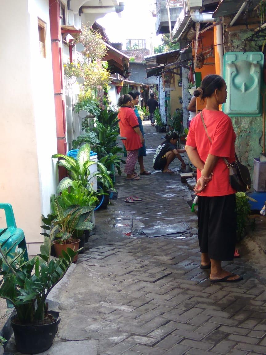 kampung sayur
