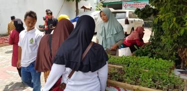 pelatihan kampung sayur